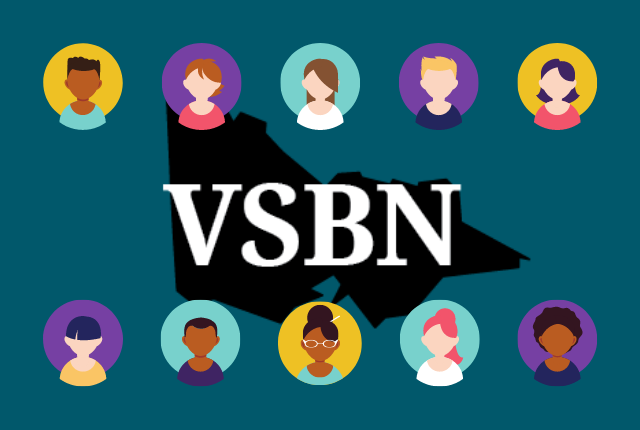 Graphic with 10 vectors representing individuals networking and the VSBN logo in the centre.